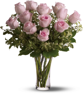 A Dozen Long Stem Pink Roses